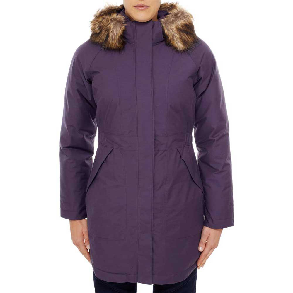 the north face arctic