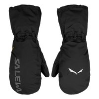 Salewa Ortles Powertex 3L Overmitten