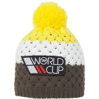 rossignol-world-cup