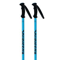 Rossignol Telescopic